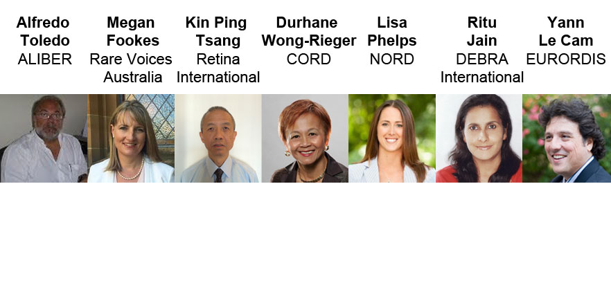 The names and photos of the seven RDI council members
